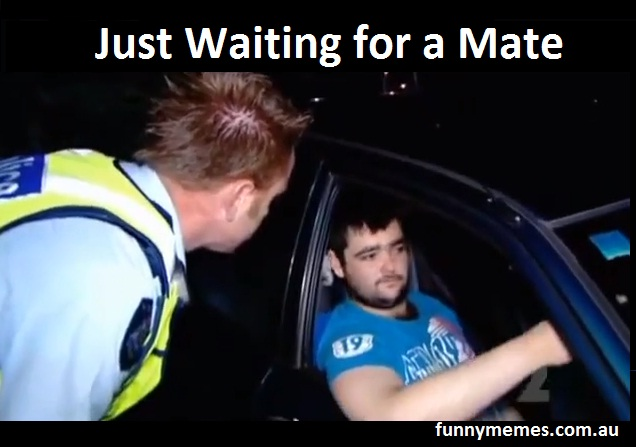 just waiting for a mate meme